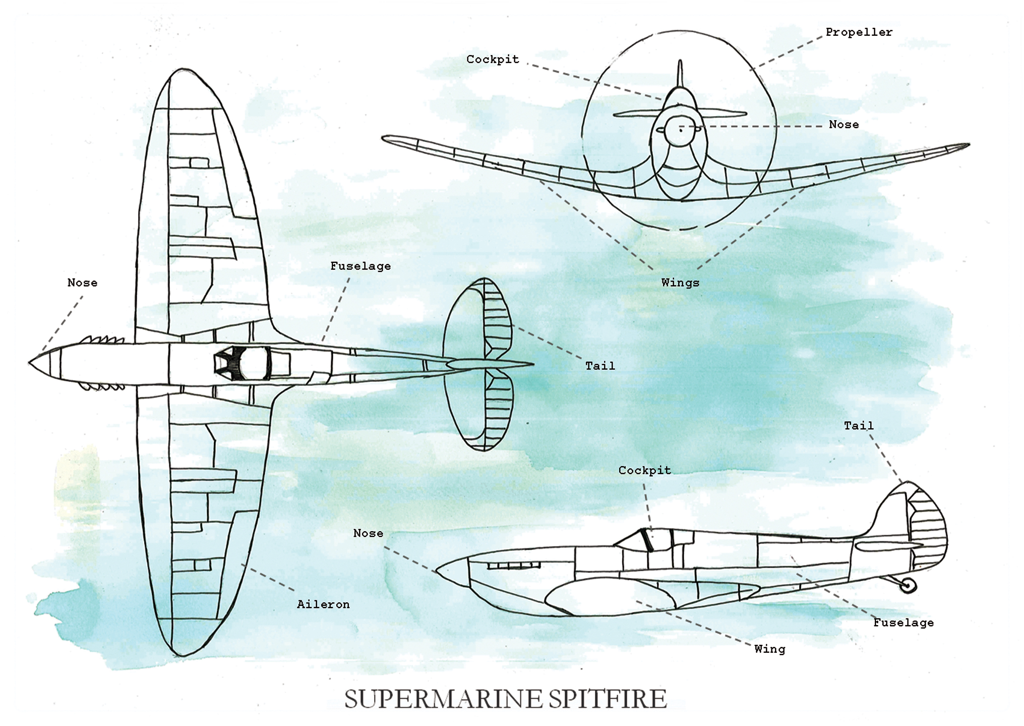 Diagram Of A Spitfire - Electrical Work Wiring Diagram •