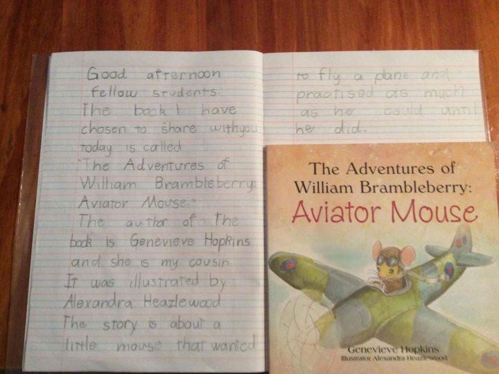 Elle's School Project – Aviator Mouse
